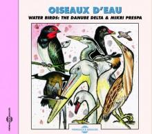 OISEAUX D'EAU - LE CONCERT DES OISEAUX