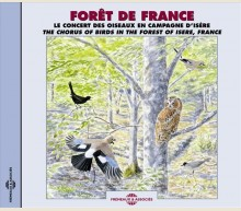 THE CHORUS OF BIRDS IN THE FOREST OF ISERE, FRANCE