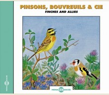 FINCHES AND ALLIES
