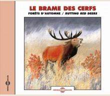LE BRAME DES CERFS - FORÊTS D'AUTOMNE