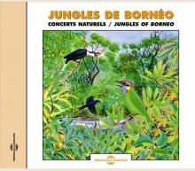 JUNGLES DE BORNEO - CONCERTS NATURELS