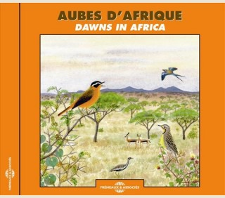 AUBES D'AFRIQUE - AFRIQUE DU SUD, SENEGAL, KENYA, CAMEROUN