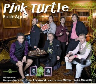 PINK TURTLE - BACK AGAIN